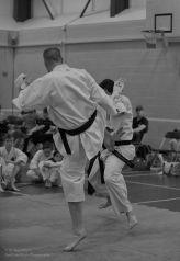 Karate Action